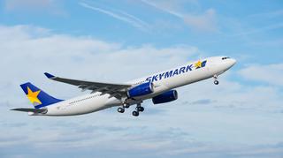 スカイマーク_A330-300.jpg